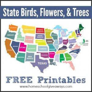 Statebirdflowerstrees