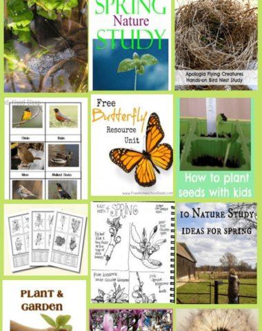 FREE Spring Activities for Middle School Children www.homeschoolgiveaways.com Grab these links for free middle school activities!