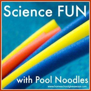 aqua noodles in water