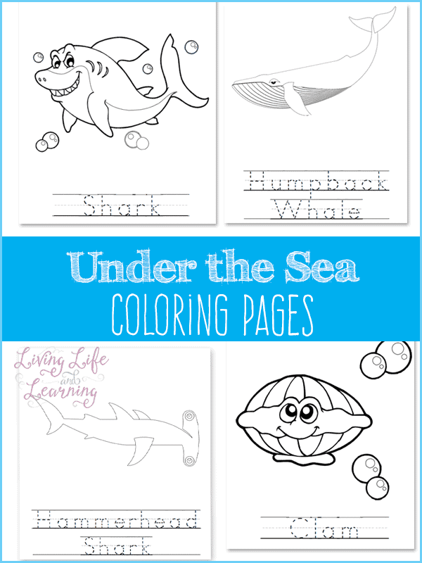 FREE Sea Life Coloring Pages - Homeschool Giveaways