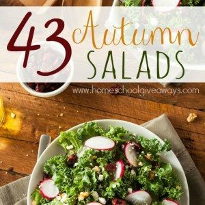 Autumn is almost here, but that doesn't mean you can't eat healthy! Try some of these Autumn Salads & Dressings this year! :: www.homeschoolgiveaways.com
