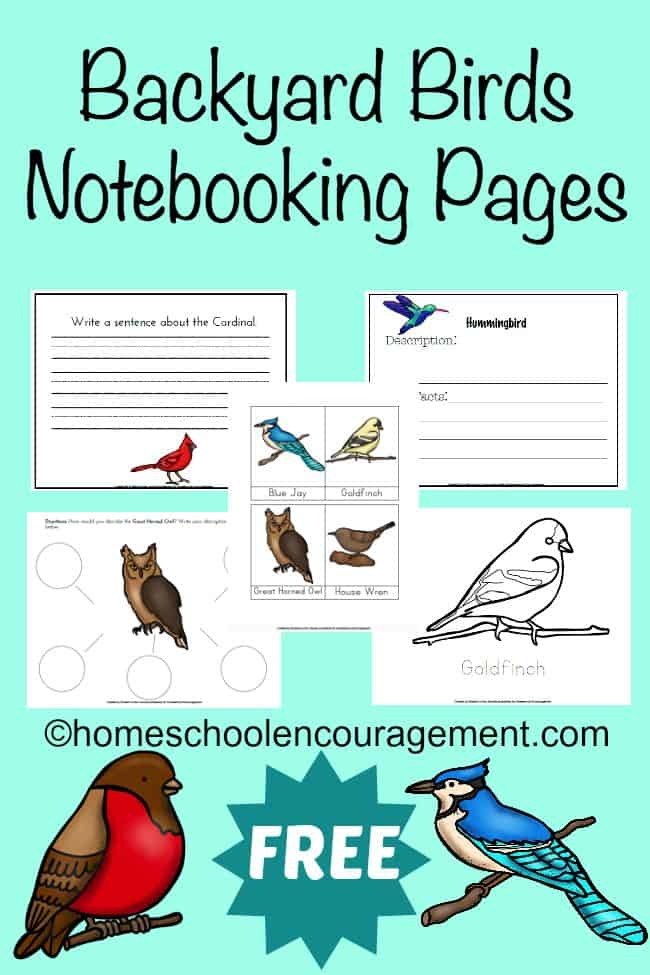 Backyard-Birds-Notebooking-Pages