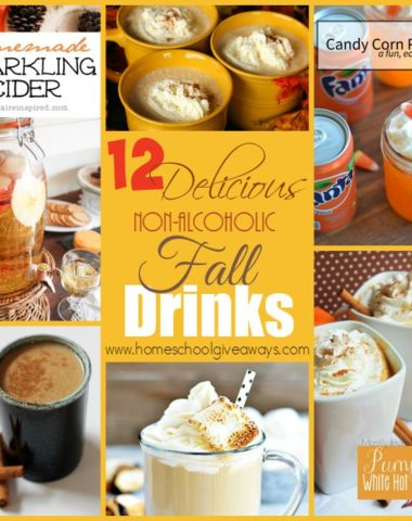 Fall is here! And it's the PERFECT time to whip up some of these Delicious Non-Alcoholic Drinks!! :: www.homeschoolgiveaways.com