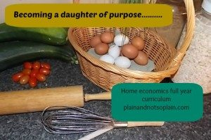 home-economics-300x199