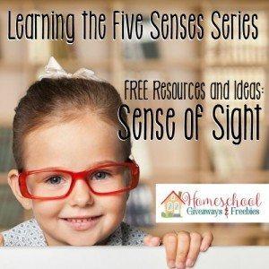 Kid, glasses, vision.