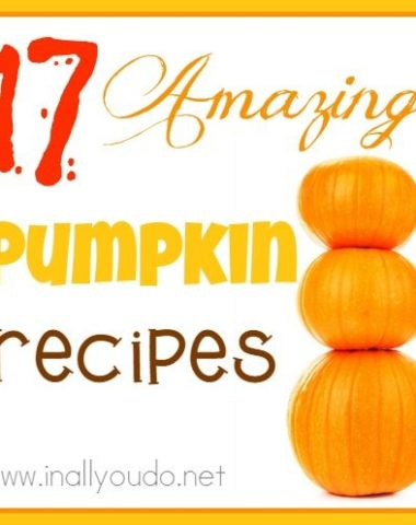 If you're a pumpkin fan, you will LOVE these 17 AMAZING Pumpkin Recipes! From breakfast to hot drinks to casseroles to desserts!! :: www.homeschoolgiveaways.com