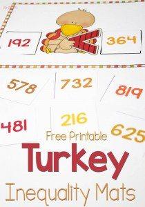 turkey-inequalities-pin1