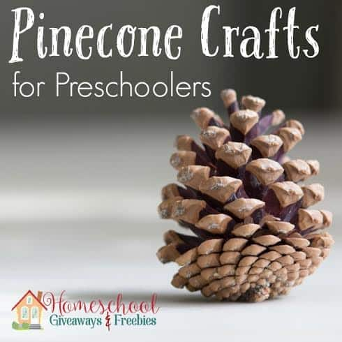 Pinecone Crafts For Preschoolers Homeschool Giveaways