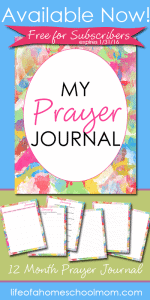 My-Prayer-Journal-is-Now-Available-FREE-for-subscribers