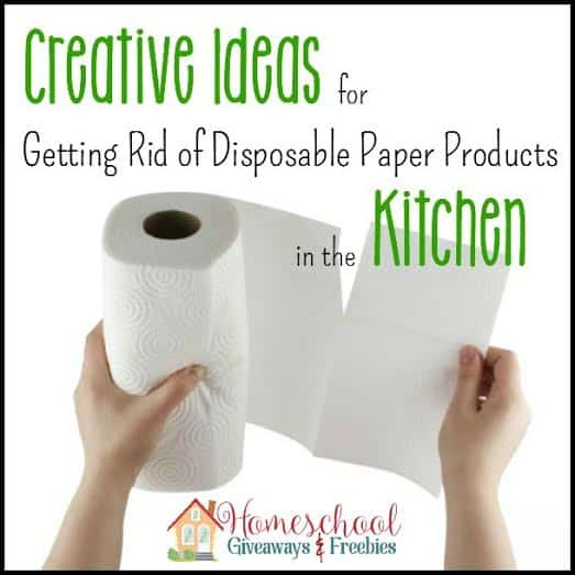 Creative Ideas for Getting Rid of Disposable Paper Products in your Kitchen!
