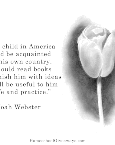 Noah Webster and History
