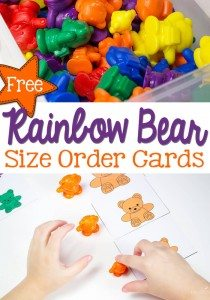 Rainbow-Bear-Size-Pin
