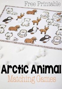 arctic-animal-matching-pin