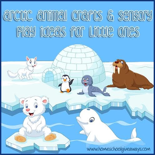 Do Your Little Ones Love Animals Winter Time Is A Great To Learn