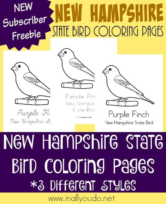 New Hampshire State Bird Coloring Pages Free Printables Homeschool