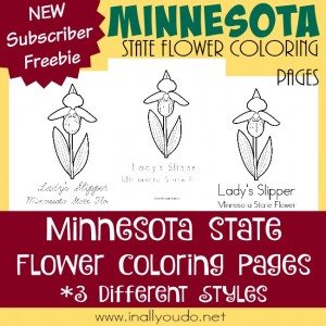 Minnesota-Coloring-Pages_square