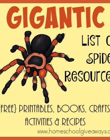 Spiders may not be the most fun topic, but this Gigantic List of Resources can help! :: www.homeschoolgiveaways.com