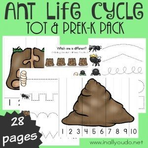 FREE Ants Tot_square