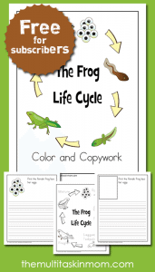Frog-Life-Cycle-Color-and-Copywork-is-FUN-for-your-children-and-free
