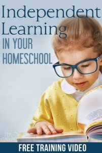 Independent-learning-in-homeschool-401x600