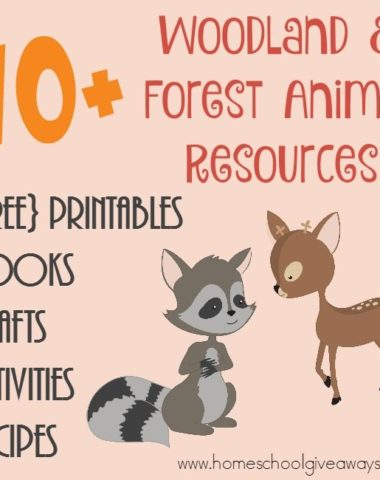 Studying the forest or woodland creatures? Check out this HUGE list of resources including printables, crafts, activities, books & recipes! :: www.homeschoolgiveaways.com