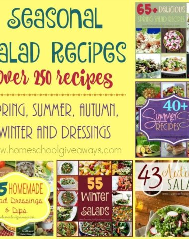 If you're looking for a delicious salad, whether for your meal or as a side, check out these 250+ recipes for EVERY season! :: www.homeschoolgiveaways.com