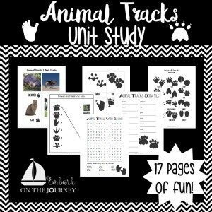 06.06 Animal Tracks Unit
