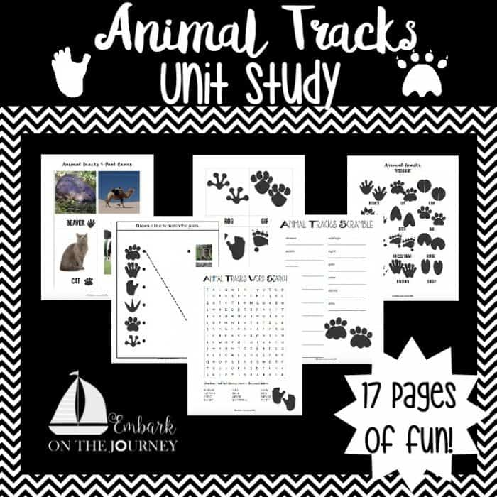 graphic regarding Free Printable Animal Tracks identified as Cost-free Animal Tunes Device Exploration Printables - Homeschool Giveaways
