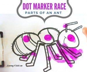 Ant-race-FB