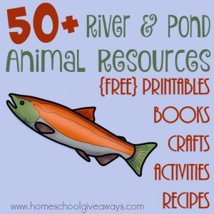If you're studying Rivers & Ponds this year, don't miss these great resources for the animals and their habitats! :: www.homeschoolgiveaways.com
