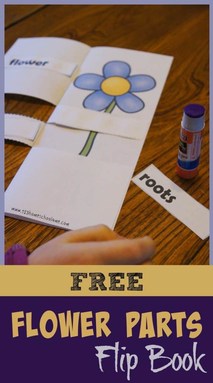 This is a graphic of Invaluable Printable Flip Books for Free