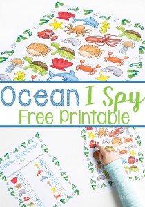 ocean-I-spy-pin