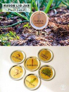 plantlabel-collage