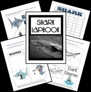 sharks_lapbook