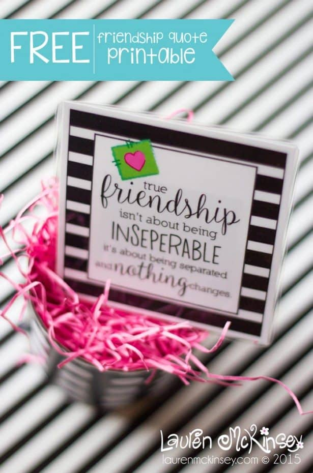 true-friendship-quote-for-made-to-be-a-momma-lauren-mckinsey_01-615x930