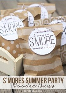 Smores-Summer-Party-Goodie-Bags