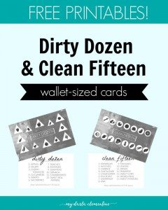 dirty-dozen-pin-e1454521721472