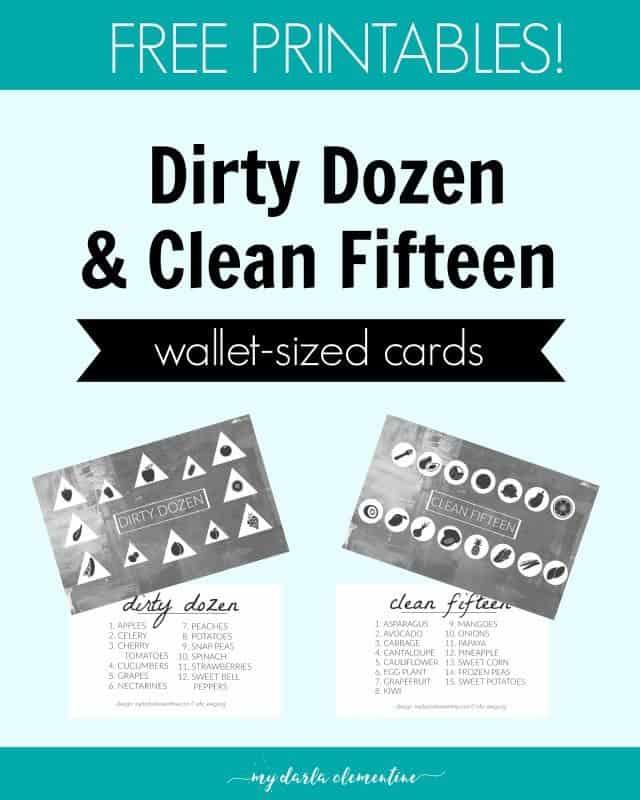 dirty-dozen-pin-e1454521721472