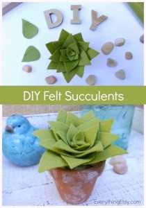 feltsucculents