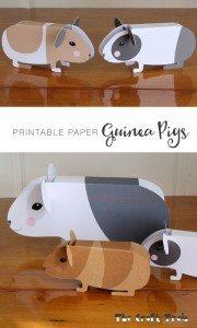 guineapigpaper