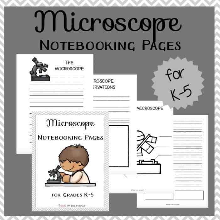 08.02 Microscope NB IG
