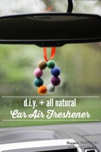 Car-air-freshener-Pinterest-683x1024