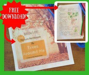 Free-Download-768x644