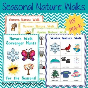 Seasonal Nature Walks