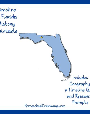 FREE Florida State History Printable