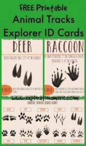Free-Printable-Animal-Tracks-Explorer-ID-Cards-500x850