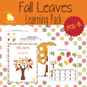 Print - Fall Leaves LP IG