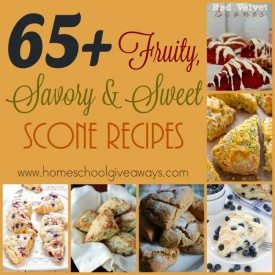 Scones are one of my favorite breakfasts, but I do like some variety. Check out these fruity, savory and sweet scone recipes to brighten up your morning! :: www.homeschoolgiveaways.com