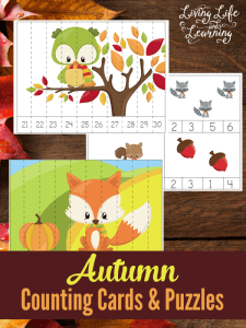 autumn-counting-cards