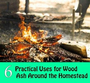 6-Practical-Uses-for-Wood-Ash-Around-the-Homestead